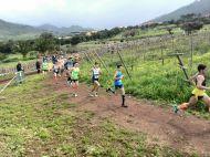 Campeonato de Canarias de Cross Largo 17