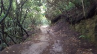 Caminata 26