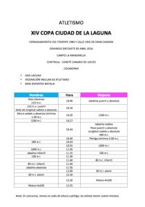 XIV COPA CIUDAD DE LA LAGUNA